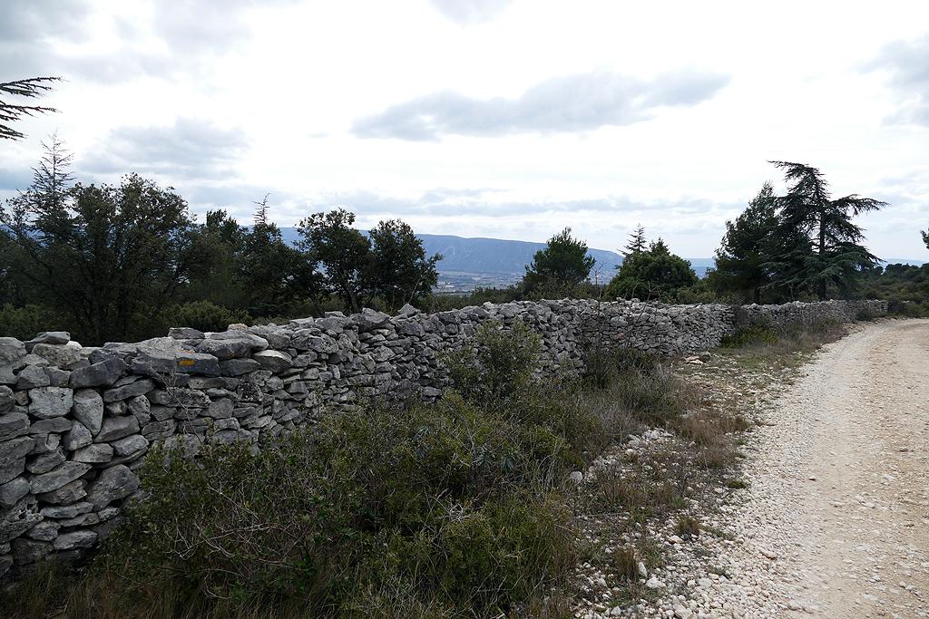 Le mur de la Peste